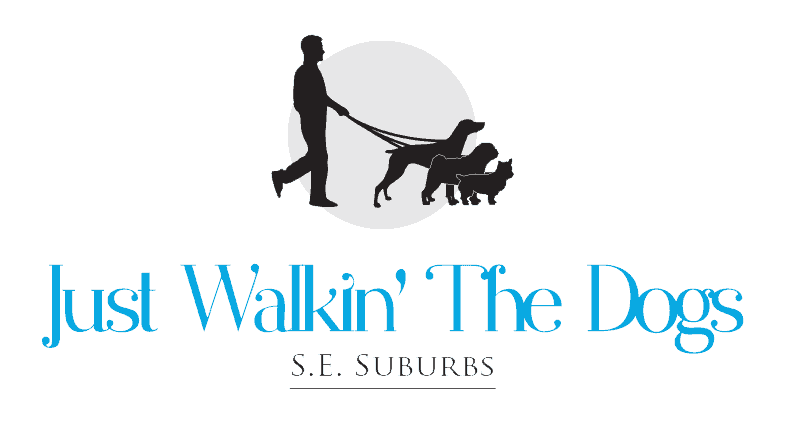 Dog Walkers Melbourne | Dog Walking Melbourne